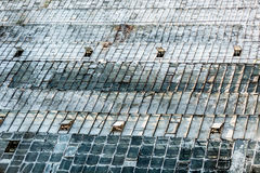 Perspective shot of old glass roof of big greenhouse Royalty Free Stock Photography
