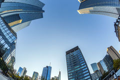 Perspective of skyscrapers in Frankfurt am Main Royalty Free Stock Photos