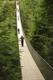 Perspective of suspension bridge in a deep forest Royalty Free Stock Photos
