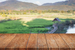 Perspective top wooden with green rice field blurred background Royalty Free Stock Photos