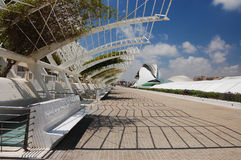 Perspective view. Of L'Umbracle royalty free stock photography