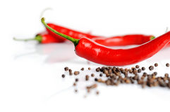 Perspective view of chilli pepper and black pepper on white Royalty Free Stock Photos