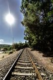 Perspective view of a current train track in Galicia Spain wit. H a lot of vegetation on the sides of the track and the blue sky and totally clear. Backlight Stock Photo