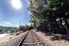 Perspective view of a current train track in Galicia Spain wit. H a lot of vegetation on the sides of the track and the blue sky and totally clear. Backlight Royalty Free Stock Photo