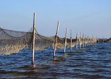 Perspective view of fishing net mounted to wooden poles Royalty Free Stock Photo