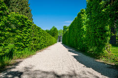 Perspective view of Garden at Schonbrunn Palace in Vienna Royalty Free Stock Images