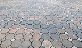 Perspective view of Grunge Color Brick Stone on The Ground for Street Road. Sidewalk, Driveway, Pavers Royalty Free Stock Photos
