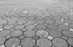 Perspective view of Grunge Gray Brick Stone on The Ground for Street Road. Sidewalk, Driveway, Pavers Stock Photography