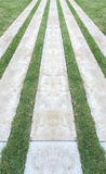 Perspective View of Marble Stone Pattern Sidewalk, Pavement with Line of Grass Texture Background Stock Image