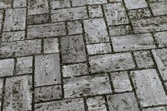 Perspective View of Monotone Gray Brick Stone on The Ground for Street Road. Sidewalk, Driveway, Pavers, Pavement. Perspective View of Monotone Gray Brick Stone royalty free stock photo