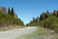 Perspective view of road, rising to slope in forest in spring. stock photos
