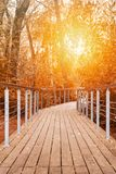 A wooden walking path with handrails in autumn forest against a orange sunlight toned. Perspective view on a wooden walking path with handrails in autumn forest royalty free stock image