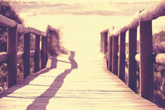 Perspective wood bridge beach sand sea summer Royalty Free Stock Images