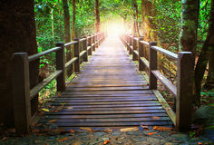 Perspective of wood bridge in deep forest crossing water stream. And glowing light at the end of wooden ways stock image