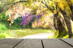 Perspective wood over blur beautiful landscape walkway. In beautiful park for background usage Royalty Free Stock Photo