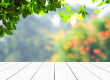 Perspective wood over blur trees with bokeh background Royalty Free Stock Images