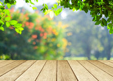 Perspective wood over blur trees with bokeh background Stock Photos