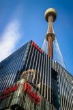 Perspektiv av Sydney Tower Eye royaltyfria bilder