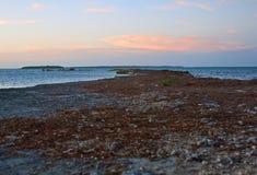Perspektiv från en Rocky Point i de Florida tangenterna Royaltyfria Bilder