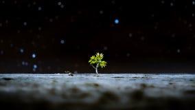 Perspektiven-Denergie der Natur lizenzfreies stockbild