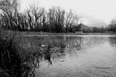 Perspektivisk förkortning av Posta Fibreno sjön Royaltyfria Bilder