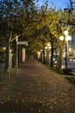 Perspektivsikt av en gata som omges av träd i höst royaltyfria bilder