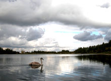 perspektywa lake Fotografia Stock