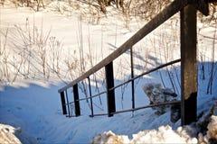 Perspektywa poręcz w zima lesie Zdjęcie Royalty Free