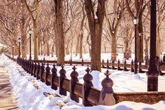 Perspektywiczna central park zima, jest magicznym momentem Fotografia Royalty Free
