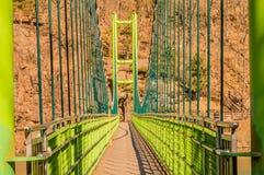 Perspektywiczny widok zielony footbridge Obrazy Stock
