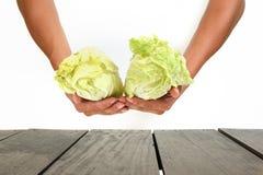Perspektywy tarasowy drewno i piękny warzywo na rękach dla półdupków Obraz Royalty Free