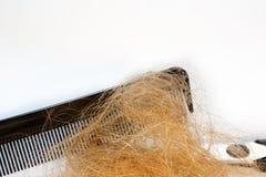 Perte des cheveux et peigne, ciseaux Images libres de droits