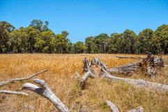Perth Australia: The Best Balance of City Life and Outdoor Fun royalty free stock photography