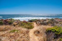 Perth Australia: Wielkie plaże z Oszałamiająco scenami obrazy royalty free