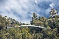 Perth botanic gardens suspended bridge Stock Images
