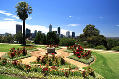 Perth city, Western Australia. King's Park garden with perth skyline on background.Western Australia royalty free stock images