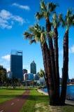 Perth Cityscape & svanflod Arkivfoton