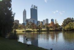 Perth sky line. Perth city sky line from park Royalty Free Stock Photos