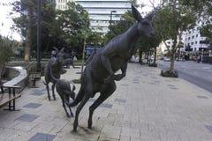 Perth västra Australien/Australien -01/20/2013: Känguruskulpturer på gataSten Georges Terrace Royaltyfri Fotografi