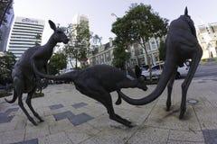 Perth västra Australien/Australien -01/20/2013: Känguruskulpturer på gataSten Georges Terrace Arkivbilder