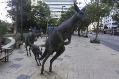 Perth zachodnia australia, Australia -01/20/2013,/: Kangur rzeźby na ulicy St Georges Tarasują Fotografia Royalty Free