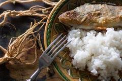 Pertica fritta con riso Immagini Stock Libere da Diritti