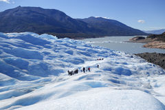 冰川迁徙在Pertito莫尔诺巴塔哥尼亚的,阿根廷 库存照片