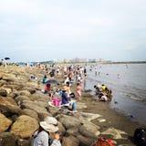 Perto da praia Imagem de Stock