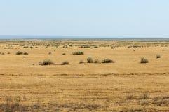 Perto do deserto Deserto Imagens de Stock Royalty Free