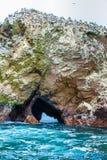 Peru, Ameryka Południowa, wybrzeże przy Paracas Krajową rezerwacją, Peruwiański Galapagos. Fotografia Royalty Free
