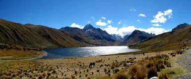 Peru - Andes Royalty Free Stock Photography