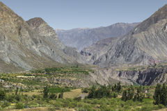 Peru, canion Cotahuasi De wolds diepste canion royalty-vrije stock foto