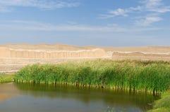 Peru, Chan Chan ruins near Trujillo stock images