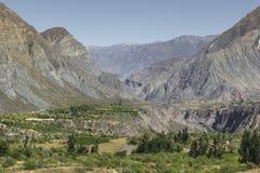 Peru Cotahuasi kanjon Den djupaste kanjonen för wolds Royaltyfri Foto
